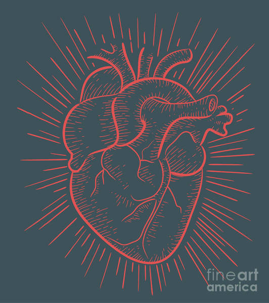 Wall Art - Digital Art - Heart On Red by Bernardo Ramonfaur