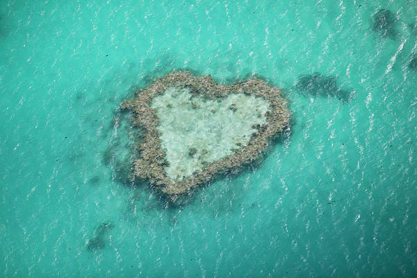 Wall Art - Photograph - Heart Reef, Great Barrier Reef by Gallo Images
