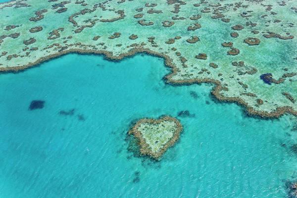 Reef Photograph - Heart Reef, Part Of Great Barrier Reef by Peter Adams