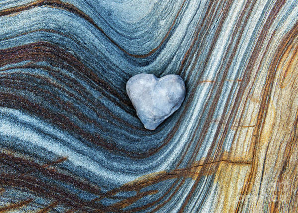 Wall Art - Photograph - Heart Stone by Tim Gainey