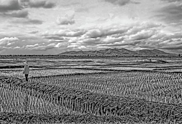 Coolie Photograph - Heartland Bw by Steve Harrington