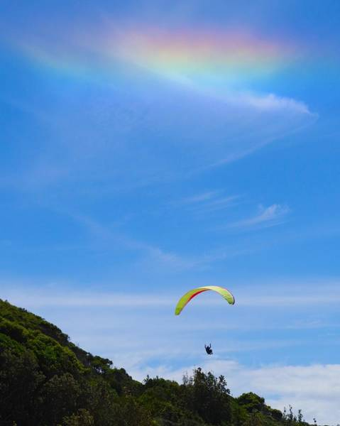 Photograph - Heavenly Hang Glider by Sarah Lilja