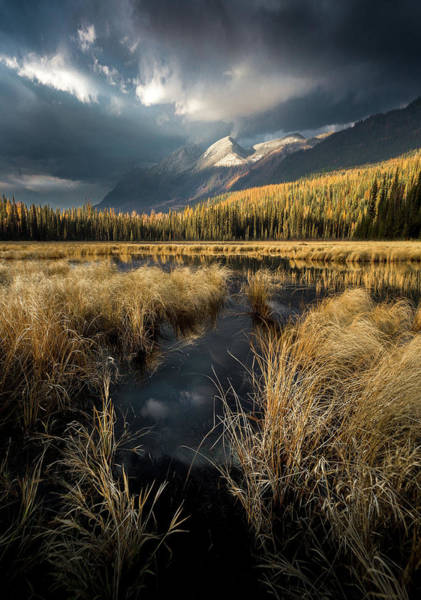Photograph - Heaven's Breath / Whitefish, Montana  by Nicholas Parker