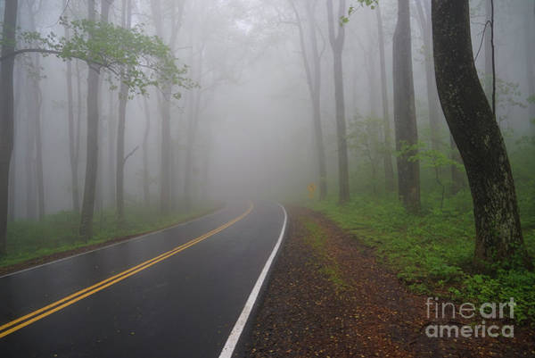 Photograph - Heavy Fog Ahead by Rachel Cohen