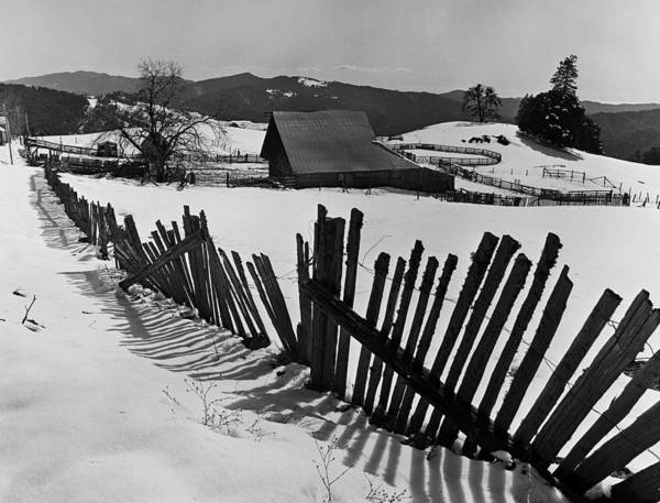 Photograph - Heavy Snowfall Hits Mendocino County by George Rose
