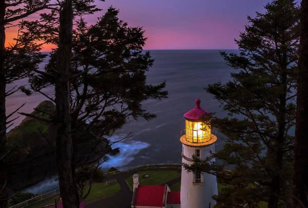 Heceta Head Lighthouse Photograph - Heceta Head At Dawn by Andrew Soundarajan