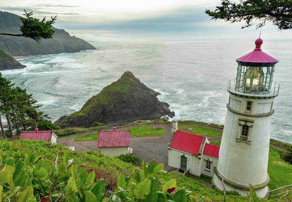 Photograph - Heceta Head Light House 1 2018 by Lara Ellis