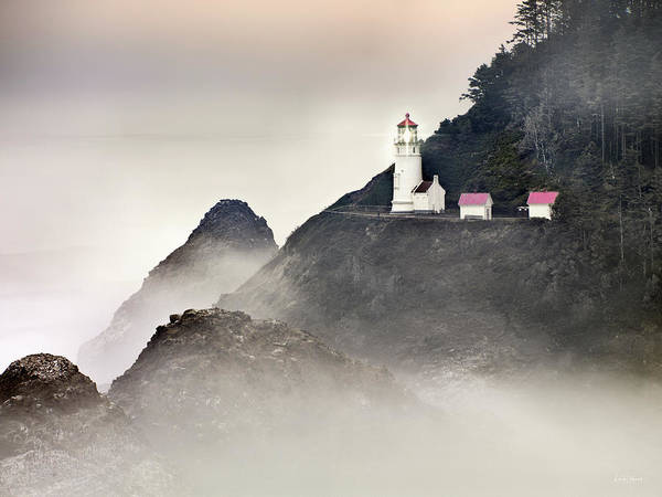 High Quality Photograph - Heceta Head Lighthouse by Leland D Howard