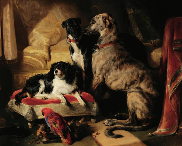 Landseer Wall Art - Painting - Hector, Nero, And Dash With The Parrot, Lory, 1838 by Sir Edwin Landseer