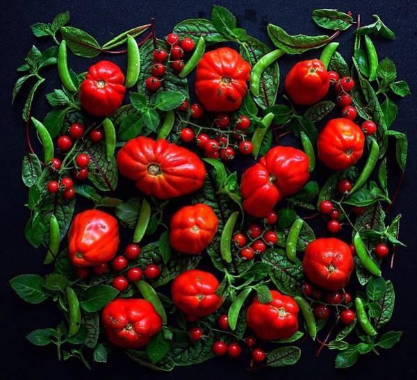 Heirloom Tomatoes And Peas Art Print