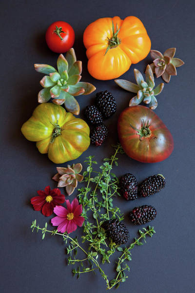 Foothills Wall Art - Photograph - Heirloom Tomatoes With Herbs, Berries by Beth D. Yeaw