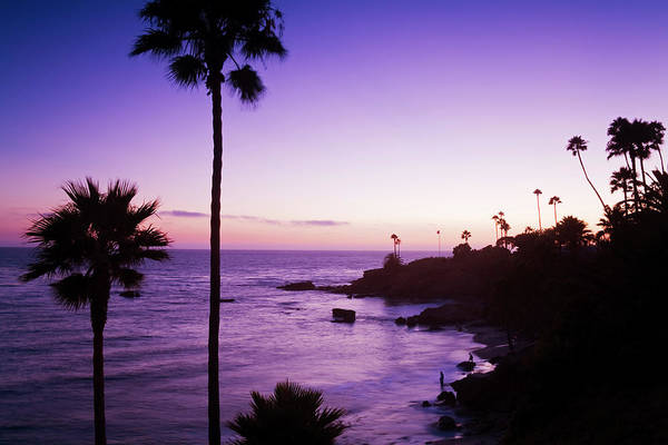 Silhouette Photograph - Heisler Park In Laguna Beach, Orange by Richard Cummins / Robertharding