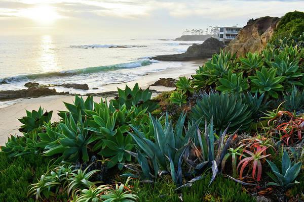 Photograph - Heisler Park Laguna Beach by Kyle Hanson