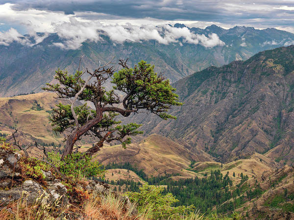 Photograph - Hells Canyon by Leland D Howard