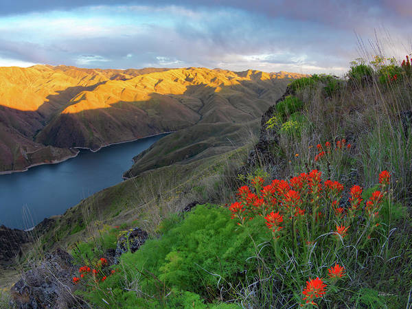 Photograph - Hells Canyon View by Leland D Howard