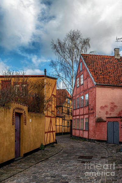 Wall Art - Photograph - Helsingor Narrow Street Scene by Antony McAulay