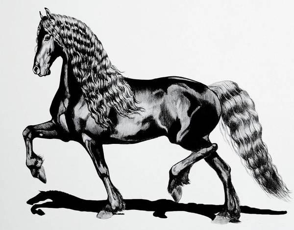 Friesian Drawing - Hendricka by Cheryl Poland