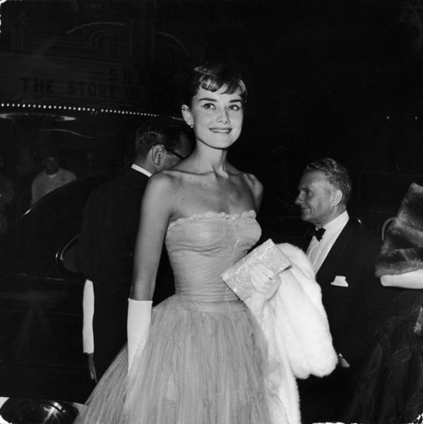 Photograph - Hepburn At Shane Premiere by Pictorial Parade
