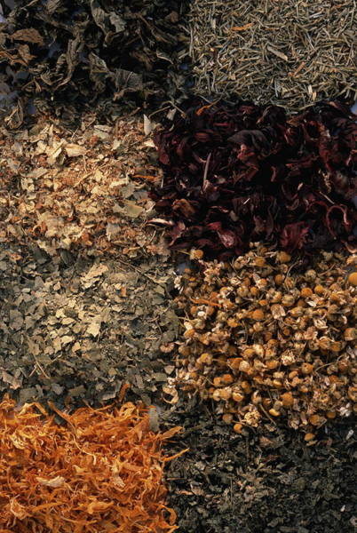 Wall Art - Photograph - Herbal Tea Varieties, Full Frame by Maximilian Stock Ltd.