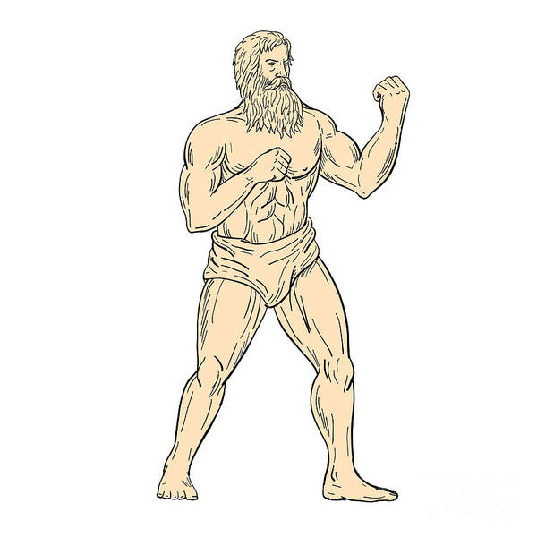 Wall Art - Digital Art - Hercules In Boxer Fighting Stance Drawing Color by Aloysius Patrimonio