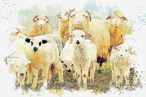 Wall Art - Painting - Herd , Rural Landscape Animal    Watercolor By Ahmet Asar by Celestial Images