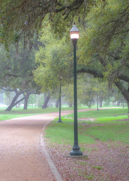 Photograph - Hermann Park Streetlight by Dan Sproul