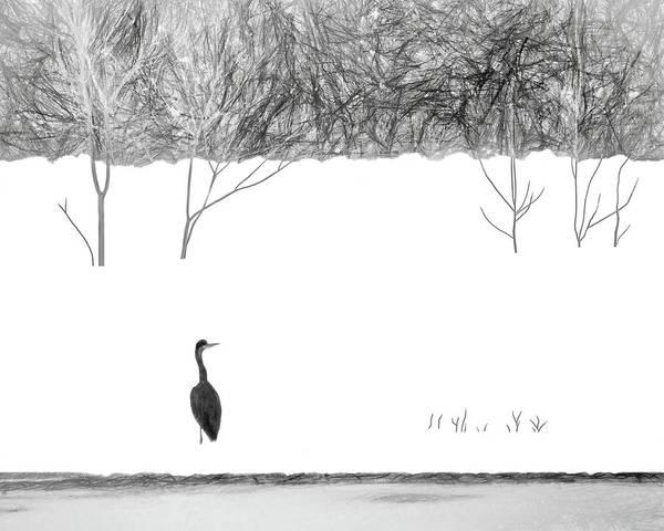 Wall Art - Photograph - Heron In The Snow by Nikolyn McDonald