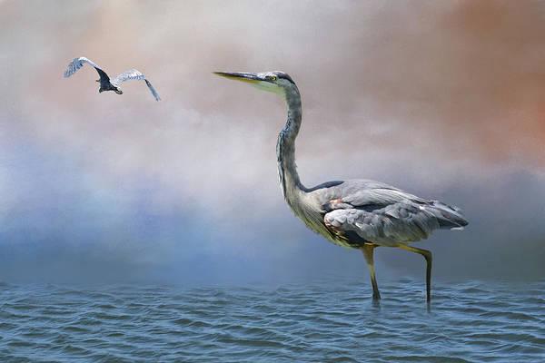 Orange County Digital Art - Heron In Water IIi by Linda Brody
