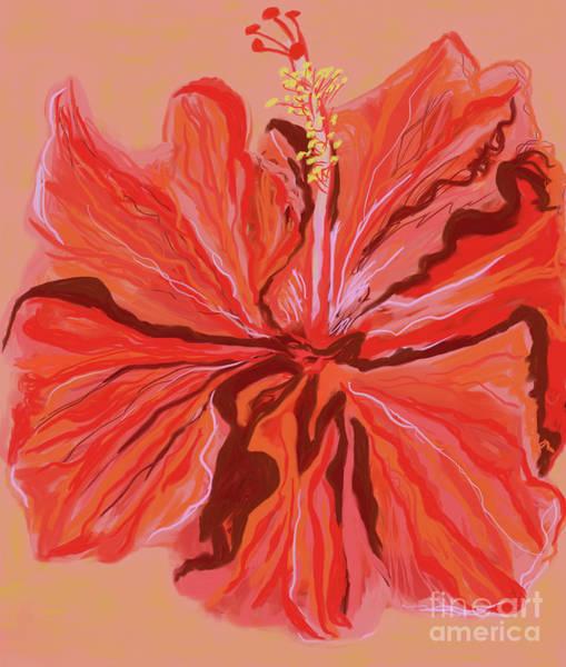 Digital Art - Hibiscus Color Lines by Annette M Stevenson