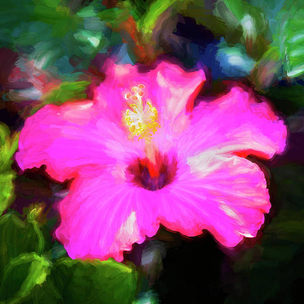 Photograph - Hibiscus Painted Lady 124 by Rich Franco