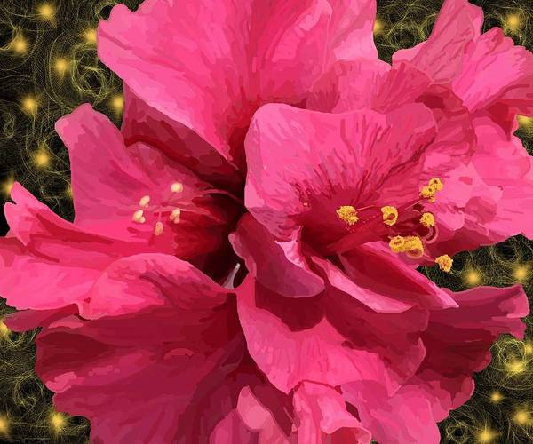 Garden Wall Drawing - Hibiscus Pollen by Joan Stratton