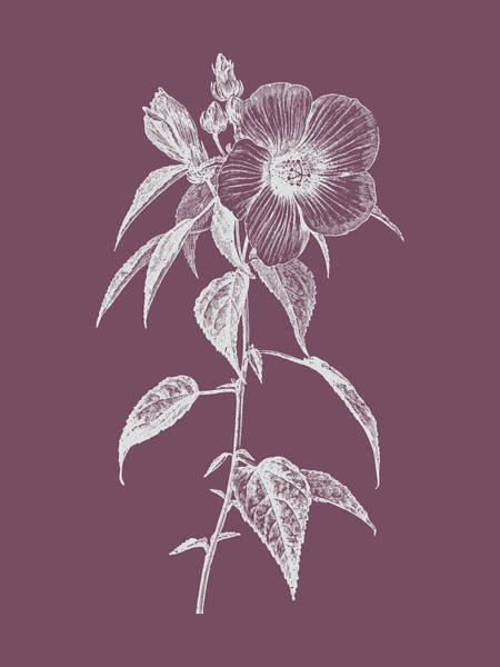 Love Mixed Media - Hibiscus Roseus Purple Flower by Naxart Studio