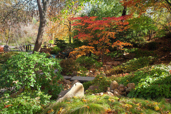Photograph - Hidden Corner Of Japanese Garden 1 by Jenny Rainbow