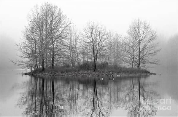 Wall Art - Photograph - Hidden Island Black And White by Steve Gass