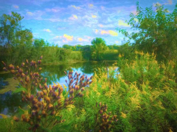 Photograph - Hidden Pond by Jack Wilson
