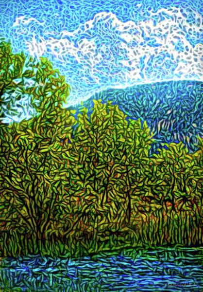 Digital Art - Hidden Pond by Joel Bruce Wallach