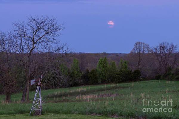 Wall Art - Photograph - Hiding Pink Moon by Jennifer White