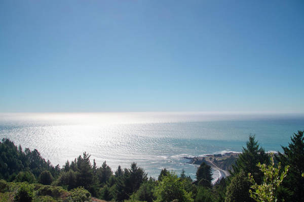 Photograph - High Above Shelter Cove by Bill Cannon