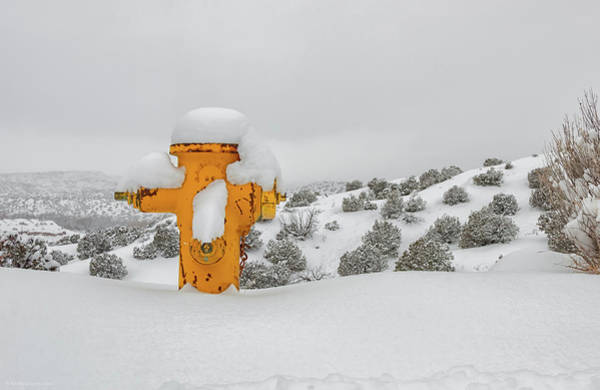 Photograph - High Desert Hydrant by Britt Runyon