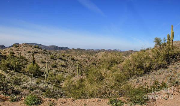 Wall Art - Photograph - High Desert Landscape by Robert Bales