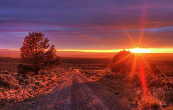Photograph - High Desert Road by Leland D Howard