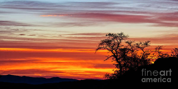 Photograph - High Desert Sunrise by Scott Kemper