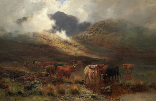 Hereford Bull Painting - Highland Cattle In The Mist by Louis Bosworth Hurt