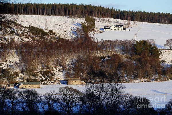 Photograph - Highland Homes by Phil Banks