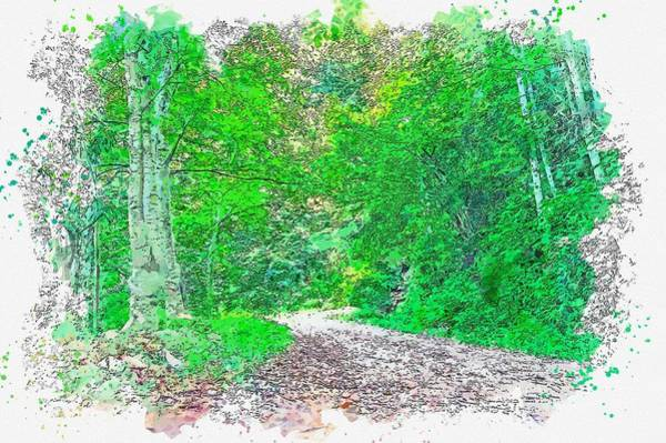 Painting - Hiking Path -  Watercolor By Adam Asar by Adam Asar