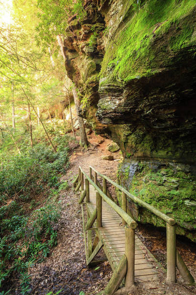 Wall Art - Photograph - Hiking Trail In Red River Gorge by Alexey Stiop