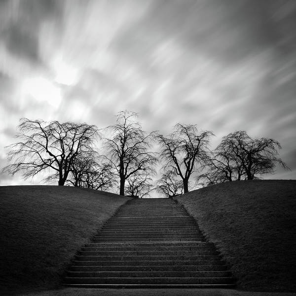 Wall Art - Photograph - Hill, Stairs And Trees by Peter Levi