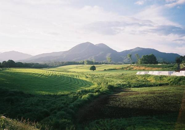 Okayama Prefecture Photograph - Hill Then by Dapple Dapple