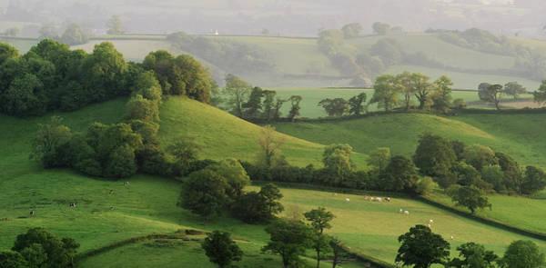 Hills Art Print by Lewis Gillingham