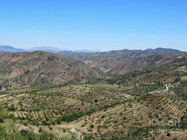 Photograph - Hills Near Pizarra by Chani Demuijlder